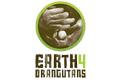 links_earth4